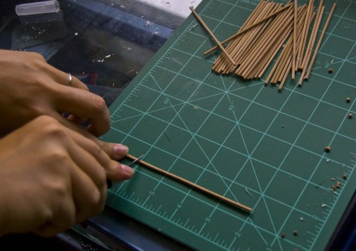 bamboocoaster01